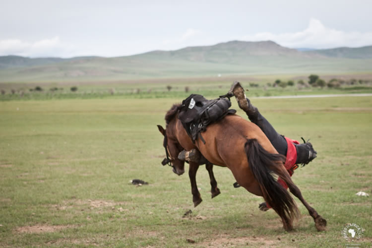 Race Across the Steppe